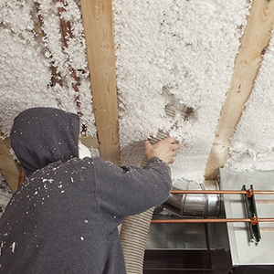 Ceiling/roof Insulation